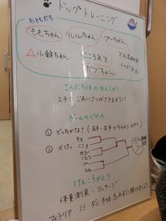 CIMG0187 (1).JPG