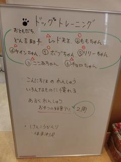 CIMG1040.JPG