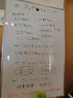 CIMG3714 (1).JPG