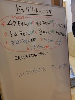 CIMG6727.JPG