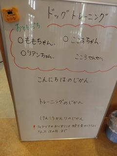 CIMG8373.JPG